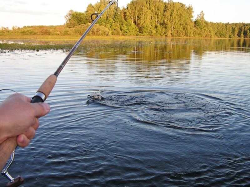 Рыбалка в нижегородской области в холодом мае